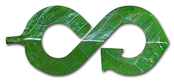 graphic showing leaf as arrow representing circular economy